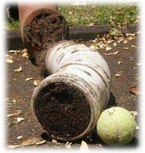 Ucpaná domovní kanalizace